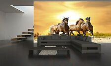 RUNNING HORSES IN A SUNSET  Photo Wallpaper GIANT WALL  POSTER PAPER  Free Glue