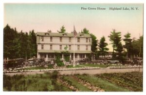 Highland Lake N Y c1930's Pine Grove House, hotel, car, Albertype Hand Colored
