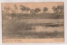 VINTAGE POSTCARD THE LAGOON, SANDGATE QLD 1900s