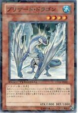 DT13-JP010 (DTC) - Yugioh - Japanese - Blizzard Dragon - Common