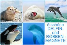 5-er Set Kühlschrank-Magnete DELFINE & ROBBEN, Kühlschrankmagnete Tiere 52x52 mm