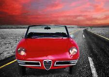 AUTOMOTIVE ART - ALFA ROMEO DUETTO SPIDER  -  LIMITED EDITION (25)