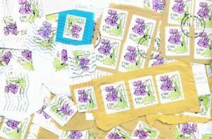 IRELAND - Modern Definitive Stamp Kiloware - Half Kilo 55c Flowers on Paper