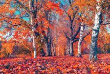 Vinyl 5x3Ft Autumn Forest Photo Backdrops Studio Photography Background Props