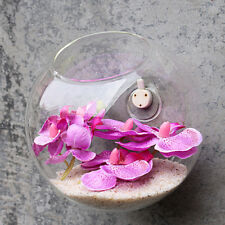 Hanging Glass Vase Flower Plant Pot Terrarium Container Party Wedding Decor
