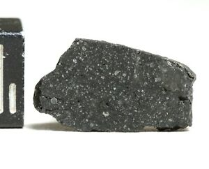 Meteorite JBILET WINSELWAN - CM2 Carbonaceous Chondrite nice fresh slice 0.67g