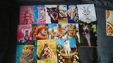 LOT OF 14 AVANTI HAPPY BIRTHDAY ANIMAL GREETING CARDS