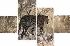 "Leopard Grass Animal Print Set 20"" X 40""+ Long 4 Panel Canvas Picture Wall Art"