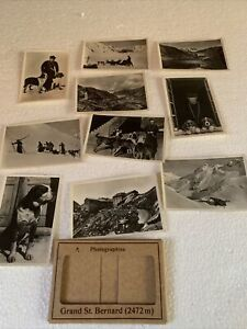 Vintage 1930s Photos St Bernard Dog