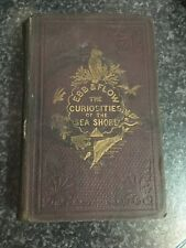 Ebb And Flow The Curiosities Of The Sea Shore 1860 Book