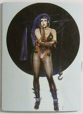 CHRIS ACHILLEOS Fantasy Art Fridge Magnet NEXT!