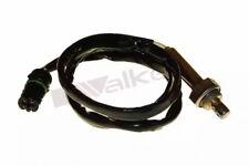 Lambdasonde Walker Products 250-24810