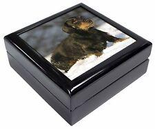 Long-Haired Dachshund Dog Keepsake/Jewellery Box Christmas Gift, AD-DU35JB