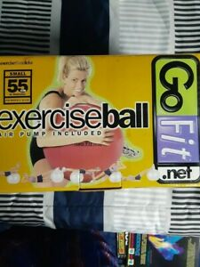 GoFit Exercise Ball (55CM) with Pump-used