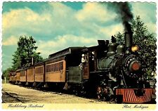 Huckleberry Railroad Train Flint Mi Michigan 38 Ton Baldwin Locomotive Postcard