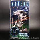 NECA Aliens - Albino Drone Xenomorph Alien Movie 7