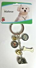 Little Gifts Dog Breed Maltese Key Chain