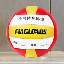 Outdoor/Indoor Volleyball Sports Ball - Size 5 - with Inflation Needle and Mesh