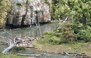 Woodland Scenics S30 Dead Fall Tree Branches 0.5 Oz
