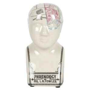 L N Fowler Reproduction Crackle Glaze Ceramic Phrenology Head - BNIB