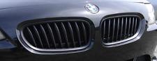 BMW E85 E86 Z4 Coupe Cabriolet Kidney Grill Grille Matt Black 2002-2008