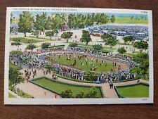 Vintage Linen Postcard of The Paddock at Santa Anita Racetrack, Arcadia,...