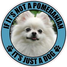 "IF IT'S NOT A POMERANIAN IT'S JUST A DOG 4"" PET STICKER"