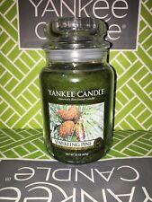 Sparkling Pine Yankee Candle 623g 22oz Large Jar - Brand New Genuine