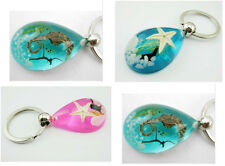 24pcs nice real seadragon ,sea grass,starfish turq&pink Holiday Gift key-chains