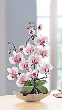 Deko ARRANGEMENT ORCHIDEE ROSA in Keramik Schale Kunstblume Orchideen Topf NEU