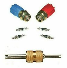 A/C System Valve Core and Cap Kit + Schrader Remover MT2910