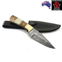 Handmade Hunting Knife, Damascus Blade, Walnut Wood, Camel Bone, Brass & Sheath