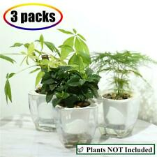 Self Watering Planter , Fengzhitao African Violet Pots, Clear 3 Packs Small