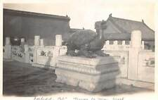 PEKING, CHINA ~ TURTLE BRONZE STATUE AT FORBIDDEN CITY, REAL PHOTO PC ~ c. 1930s
