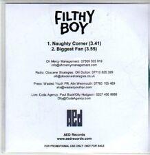 (DA939) Filthy Boy, Naughty Corner / Biggest Fan - 2012 DJ CD