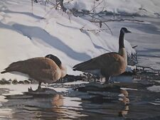 """Terry Isaac Vintage Print-""""Winters Thaw-Canadian Geese""""  36x20"""