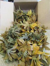 1600 Wholesale Artificial Leaf Fake Leaves Wedding Silk Flower Craft DIY