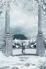Winter Snow Scene Backdrop Vinyl Photography Nature Background Studio Prop 5x7ft
