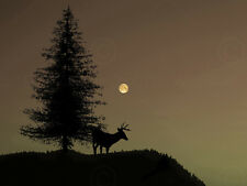 Photo cerf arbre silhouette moon wall art print picture poster HP2712
