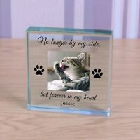 Personalised Glass Block Token Paw Prints Dog Cat Memorial forever in my heart