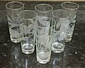 "Hawaiian Flowers Highball Glasses Set of 6 Tumblers Clear Etch BOP Jasmine 6.75"""