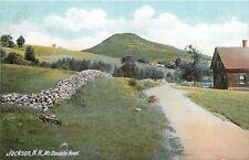 Jackson NH~Boundary Stones by Homestead~Mt Double Head~1905 Postcard