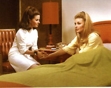 Barbara Parkins Sharon Tate Valley of the Dolls 8x10 photo T1533