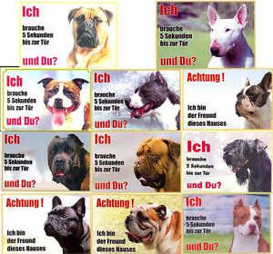 Hunde Warnschild Bull + Terrier 21x15cm laminiert für Haus + Garten + Hoftor