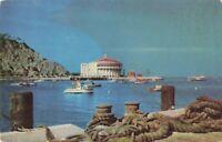 Postcard Catalina California
