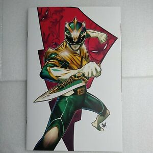 Mighty Morphin #1 Ben Harvey Limited Virgin Variant. Limited to 300 w/ COA NM+/-