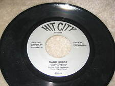 "DARK HORSE ""Justinteen"" 1986 RARE OHIO INDIE ROCK JAM BAND 45 grateful dead"