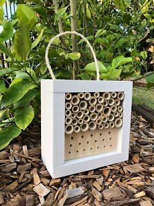 Australian Ladybird and Insect House | Solitary Bee Hotel | Mixed Small Painted