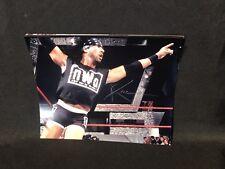 WWE WWF XPAC AUTOGRAPHED 8X10 PHOTO DX NWO SEAN WALTMAN SIGNED AUTOGRAPH AUTO