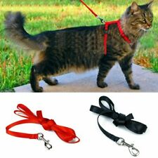 Adjustable Cat Harness Belt Lead Leash Pet Kitten Collar Safety Strap Rope Nylon